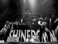 Shinedown Foto: Steffie Wunderl