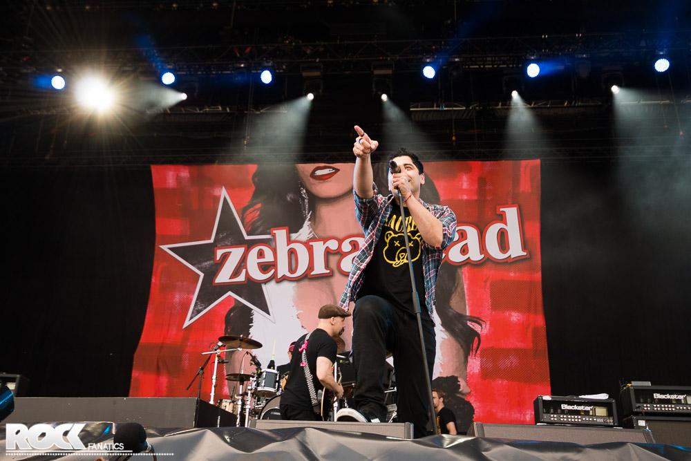 Zebrahead