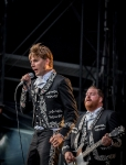 the-hives-14