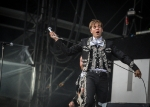 the-hives-7