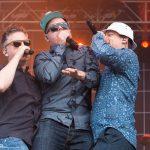 Nova Rock 2014 - Fettes Brot