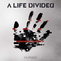 ALD Human