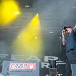 Vainstream Rockfest 2015 - Fear Factory