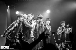 Die koreanische Boygroup 24K bei ihrem Konzert in der Kantine in Köln. Foto: Steffie Wunderl